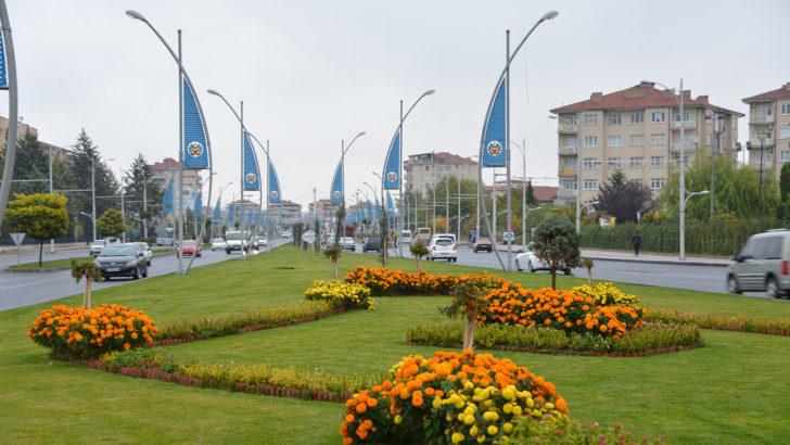 Büyükşehir 35 bin adet süs lahanası dikecek