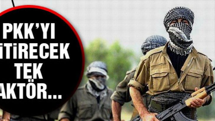 'PKK'yı bitirecek tek aktör…