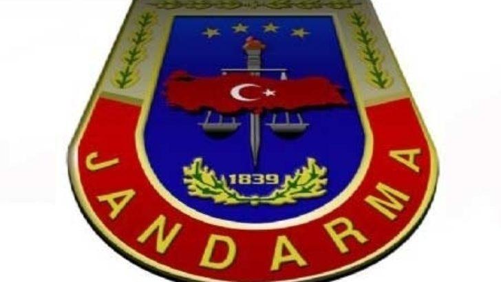 Jandarma 30 bin paket kaçak sigara ele geçirdi
