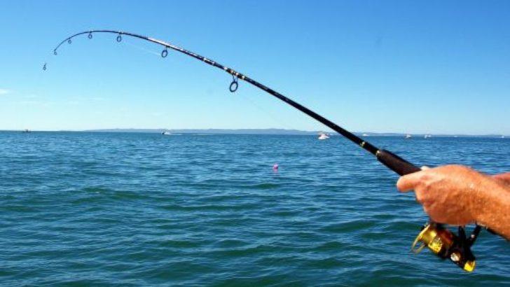 Balık avı ihalesi