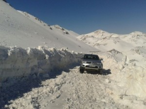 karla mücadele