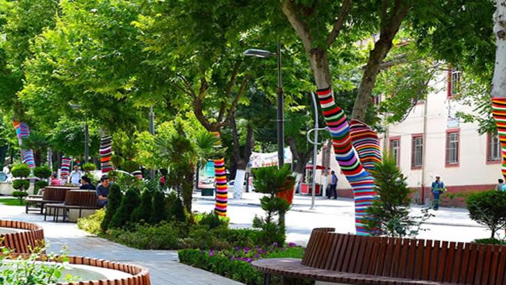 Büyükşehir'de Ağaçları Giydirdi
