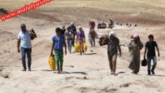 370 mülteci öldü
