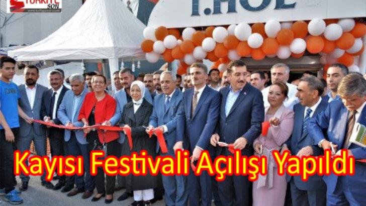 Kayısı Festivali Açılışı Yapıldı