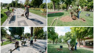 Malatya Büyükşehir Belediyesi tarafından Hürriyet Parkına tüplü fidanların dikimi yapıldı.