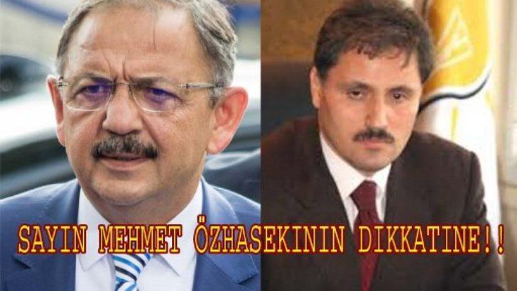 SAYIN MEHMET ÖZHASEKİNİN DİKKATİNE !!