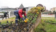 Büyükşehir Belediyesinden Malatya'nın yeşil dokusuna önemli katkı