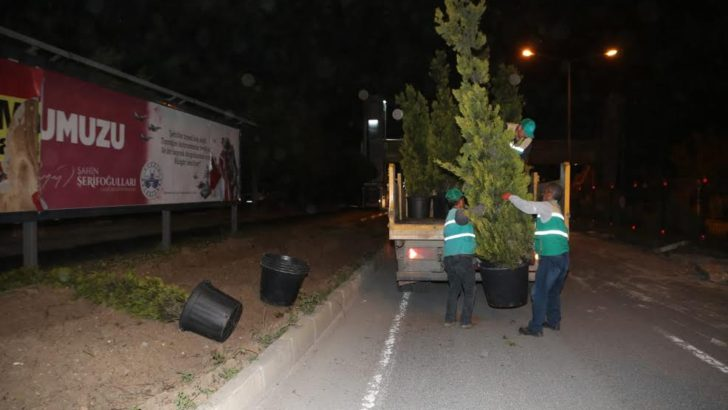 Elazığ belediyesi'nden yeşile saygı