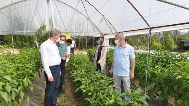 """""""Yeşilyurt Belediyesi Tarımsal Hizmetlerde Büyük Bir Mesafe Kat Etti"""""""
