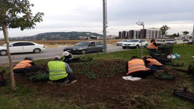 Adıyaman Belediyesi Yeşil Alanlarda Mevsimsel Bakım Çalışması Yapıyor