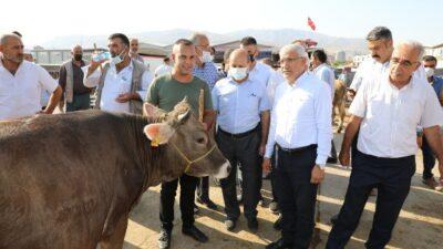 Başkan Güder Canlı Hayvan Pazarını Ziyaret Etti